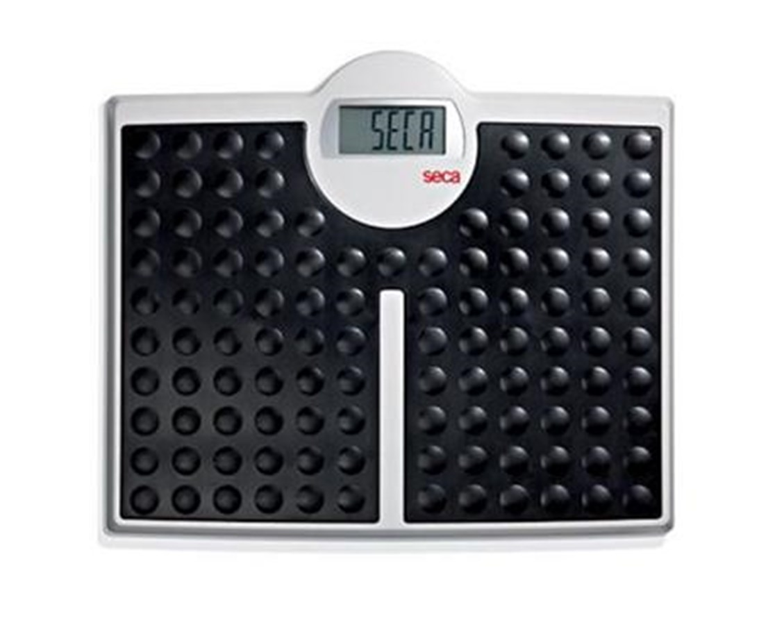 813 High-Capacity Digital Floor Scale SEC8131321009