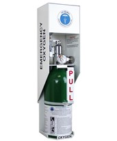 Lif-O-Gen® Automated Wall Mount Emergency Oxygen Kit with Refillable Cylinder ALL31-01-0600