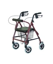 Walkabout Junior Four-Wheel Rollator GRARJ4301R