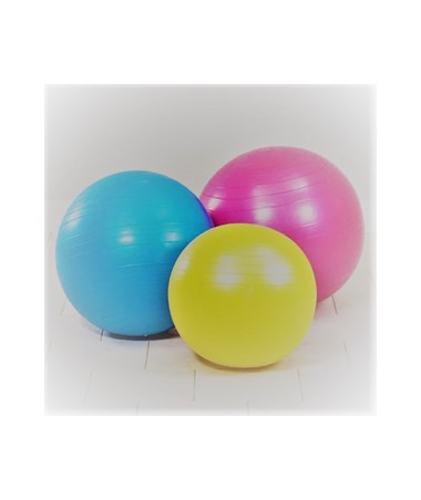 Heavy-Duty Exercise Balls CLI8030