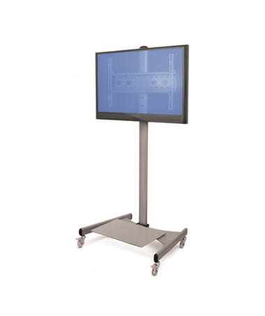 ESI Mobile LCD TV Mount with Monitor mock-up