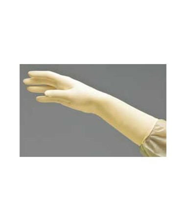 Dermassist™ Powder-free Sterile Latex Exam Gloves